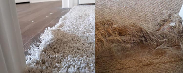 Best Carpet Repair Glenelg